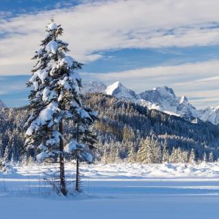 Winter am Barmsee