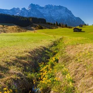 Frühling auf den Buckelwiesen und am Geroldsee